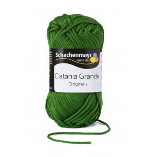 Catania Grande olíva 3392