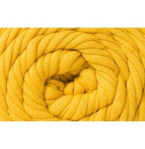 Cotton Jersey gold fonal