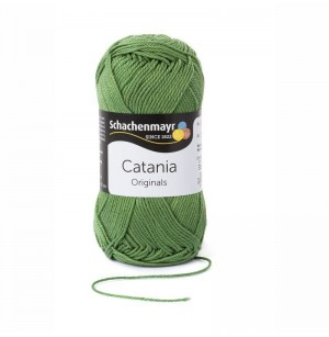 Catania kiwi 00212