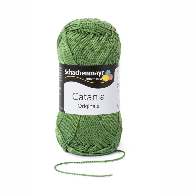 Catania kiwi