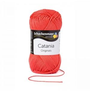 Catania kamélia